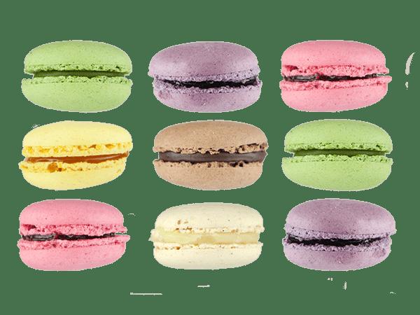 Macarons - Nous sommes célèbres
